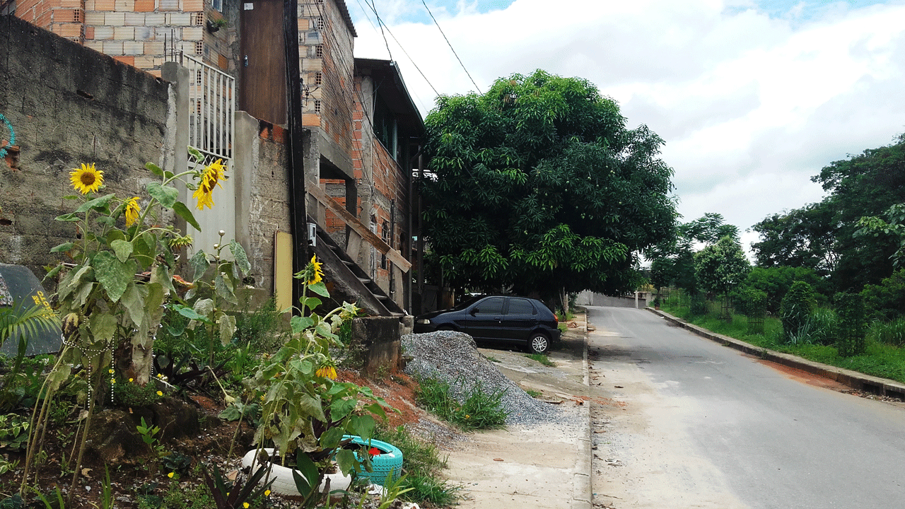 Foto da Rua dos Bacuraus. À esquerda, algumas casas com os tijolos expostos e um canteiro com girassóis. À direita, mato, onde fica um córrego de água de nascente.